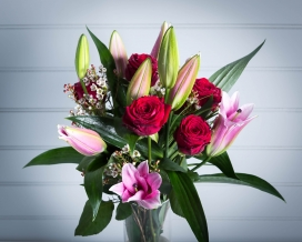 Pink Lily and Red Rose