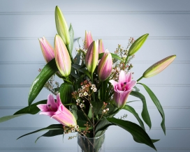 Pink Lily and Waxflower